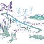 Schüttinsel_Collage_transparent